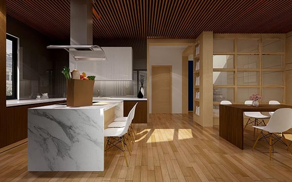 Kitchen Island layout - Open plan concept